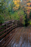 Wooden bridge leads into autumn. WI